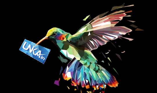 Creative Logo Design Bird